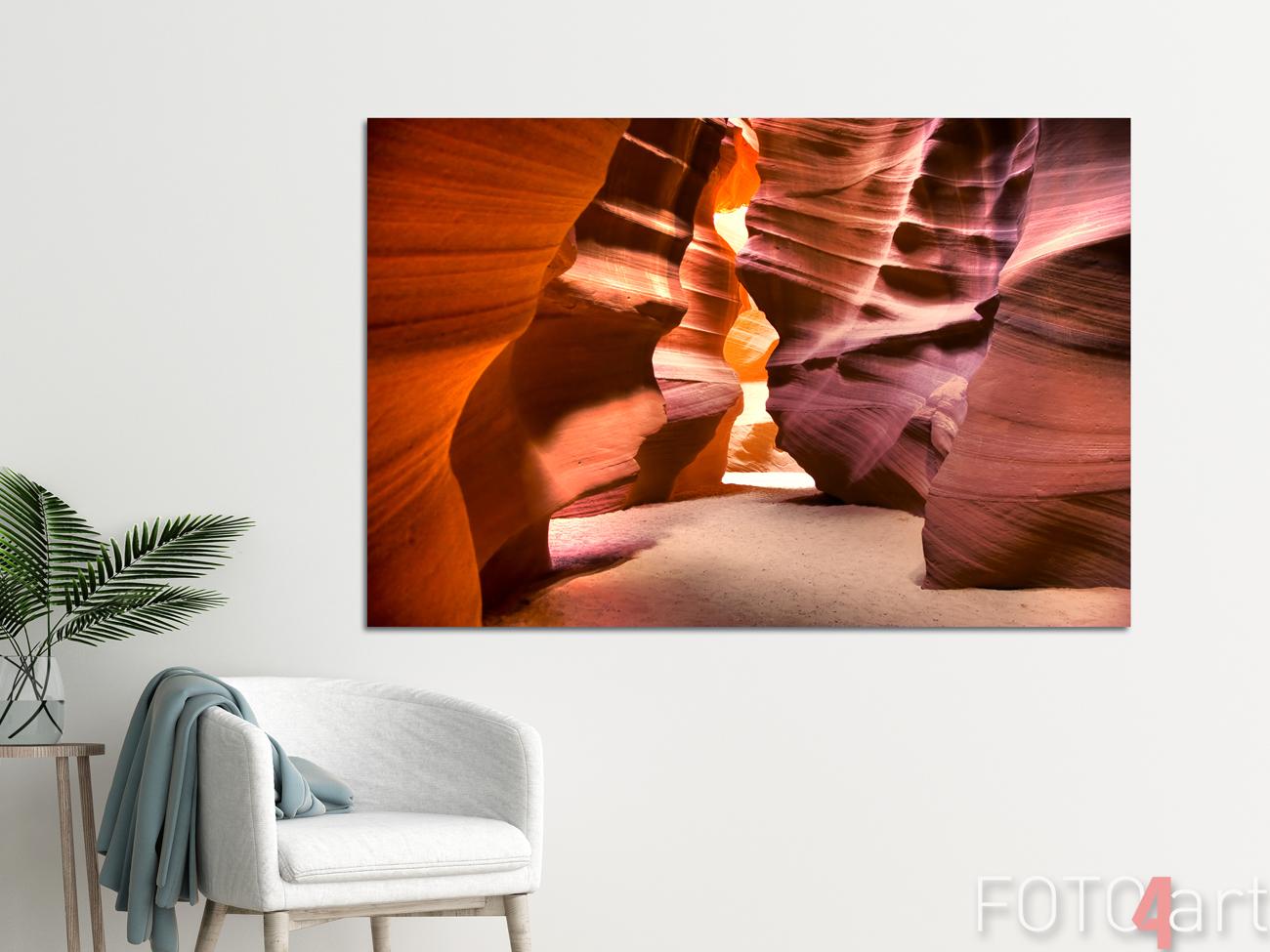 Poster mit Kaktus