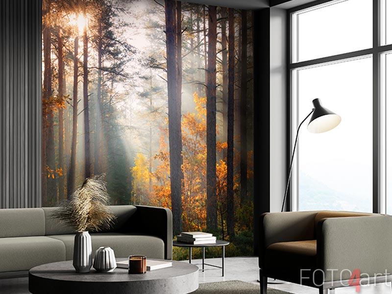 Fototapeten - Fall forest