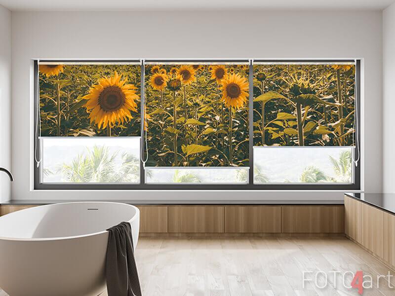 Fotorollo mit Sonnenblumen