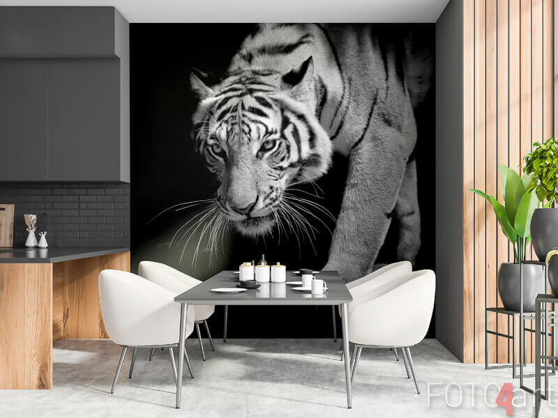 Fototapeten - Schwarz-Weiß-Tiger