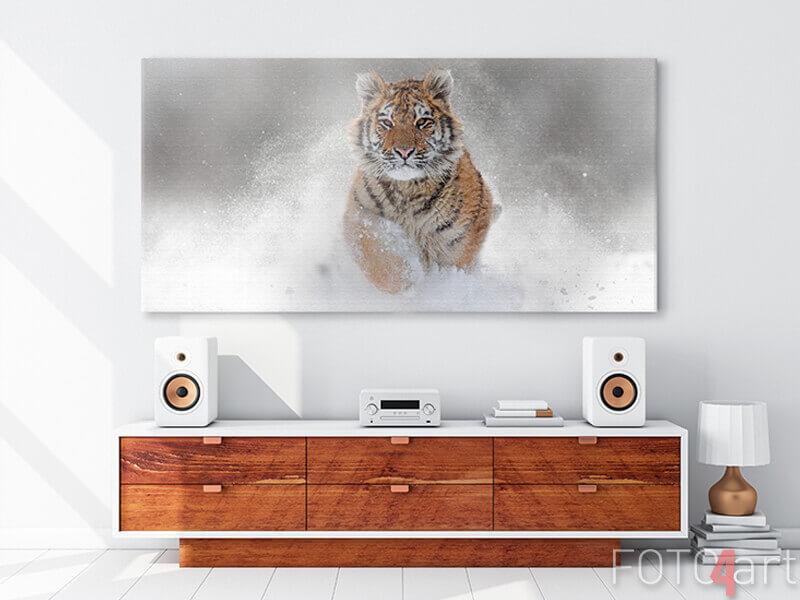 Foto auf Leinwand - wilder Tiger im Winter