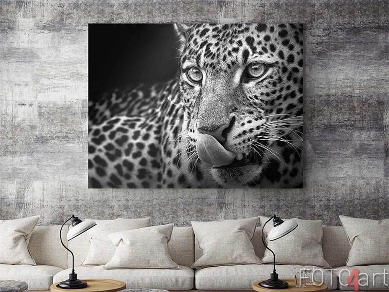 Leopard auf Aluminium