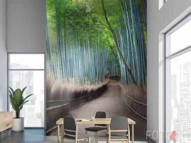 Bambus Wald Fototapete