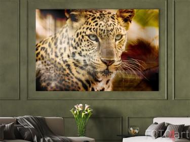Leopard auf Acrylglas