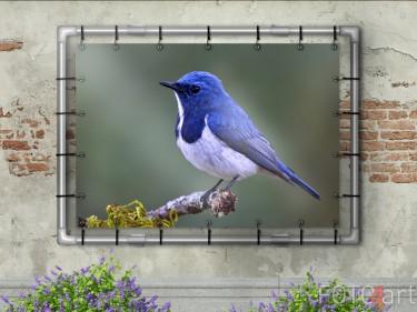 Gartenposter mit Vogel