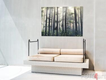Gartenposter mit nebligem Wald