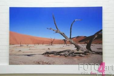 Foto op Canvas Woestijn