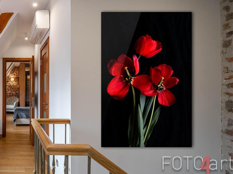 Foto auf Acrylglas von roten Tulpen