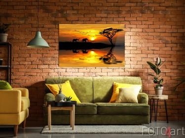 Foto auf Plexiglas Sonnenuntergang-Savanne