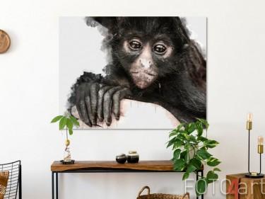 Foto von einem Affe auf Aluminium