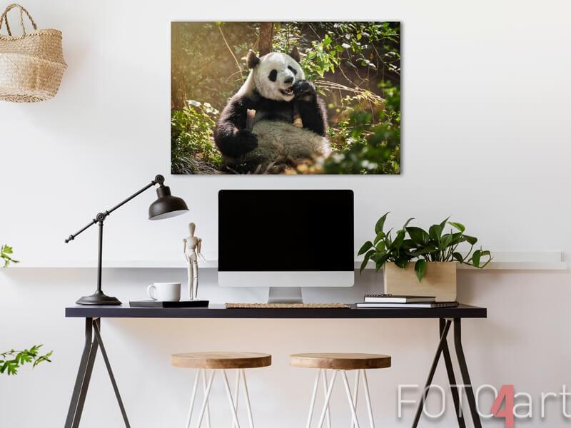 Panda auf Aluminium