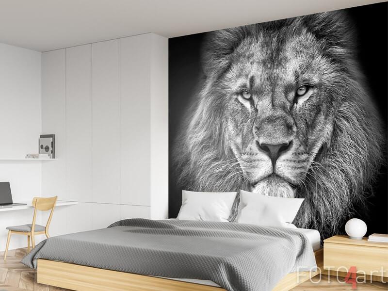 Schwarz-Weiß-Fototapete Löwe