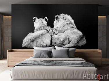 Löwenfamilie auf Fototapete