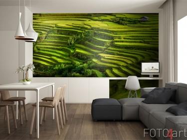 Fototapete mit Reisfeldern