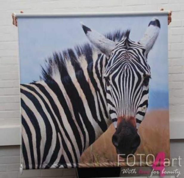 Fotorolgordijnen Zebra