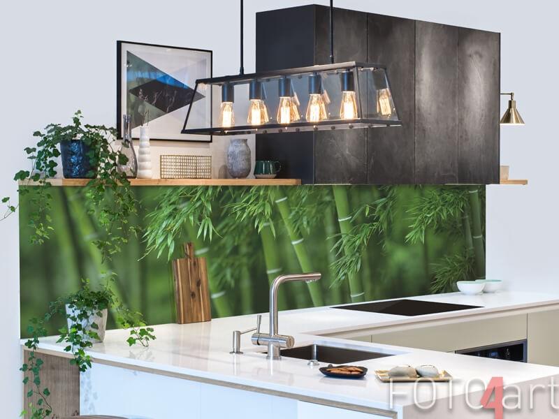 Küchenrückwand aus Glas mit Bambus