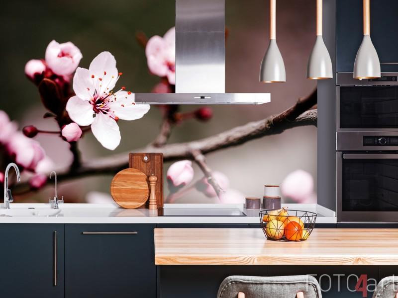 Küchenrückwand mit Foto Kirschblüte