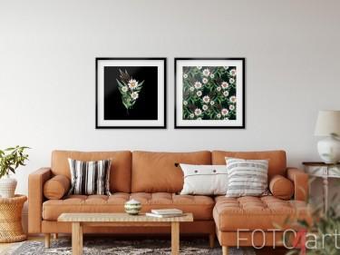 Bild mit Rahmen mit Gänseblümchen