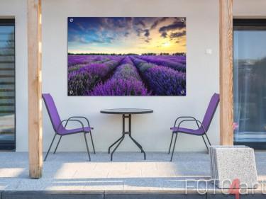 Gartenposter eines Lavendelfeldes